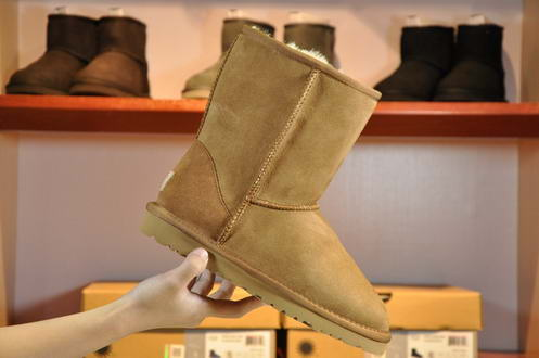 UGG Waterproof 1006223 Chesnut