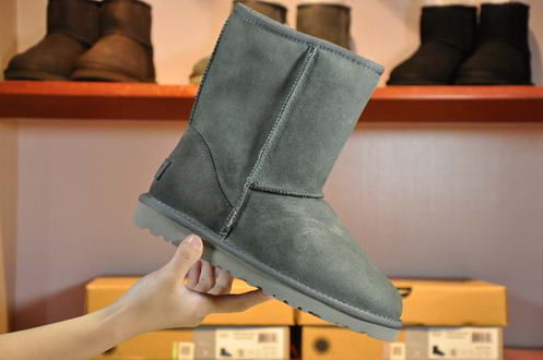 UGG Waterproof 1006223 Grey